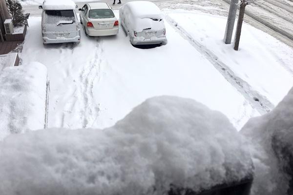 雪残り.JPG